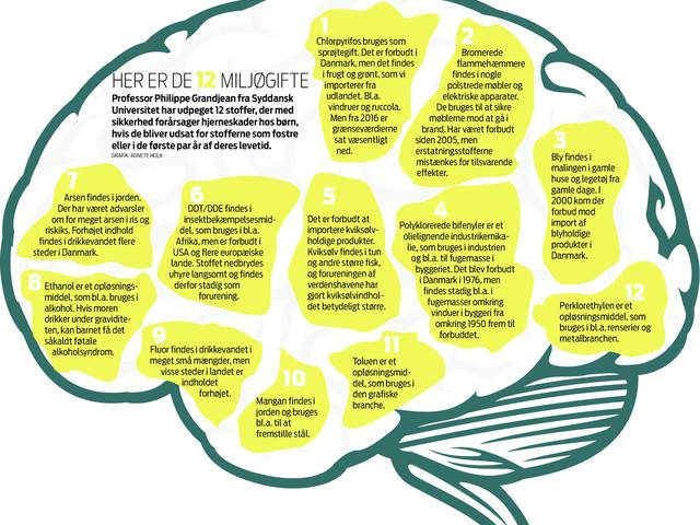 Professor slår alarm: Almindelige dagligvarer smadrer dit barns hjerne