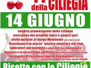 41° Sagra della Ciliegia a Bagnaria PV, risotto con le ciliegie