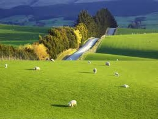 IMU sui terreni agricoli o montani: calcolo ed aliquote