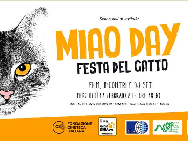 Miao Day – Festa del Gatto il 17 febbraio