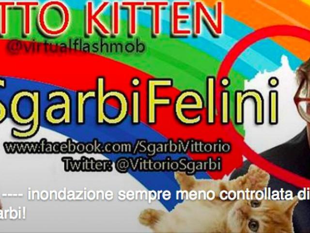 Gattini su Sgarbi: dopo Grillo e Salvini, il prossimo flash mob virtuale è #SgarbiFelini