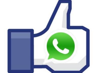 """Whatsapp sempre più simile a Facebook: Tasto """"Mi Piace"""" in arrivo!"""