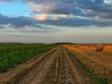 Imu terreni agricoli montani: esenzione e scadenza pagamento