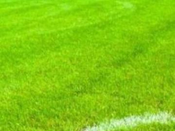 Pronostici Serie A: le partite in calendario nella 26esima giornata