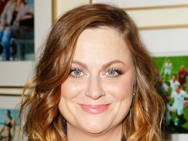 Amy Poehler Is Dating Lawyer Benjamin Graf