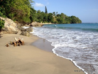 $629 / 1br - Save on a warm tropical vacation in Jamaica (Boscobel, Jamaica)