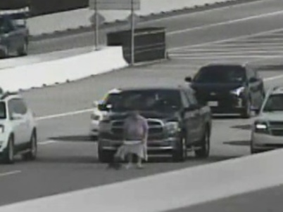 Video: Woman chases cat on Houston tollway