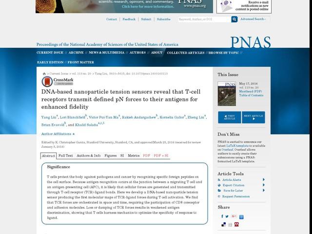 Piconewton TCR forces enhance antigen fidelity [Applied Physical Sciences]