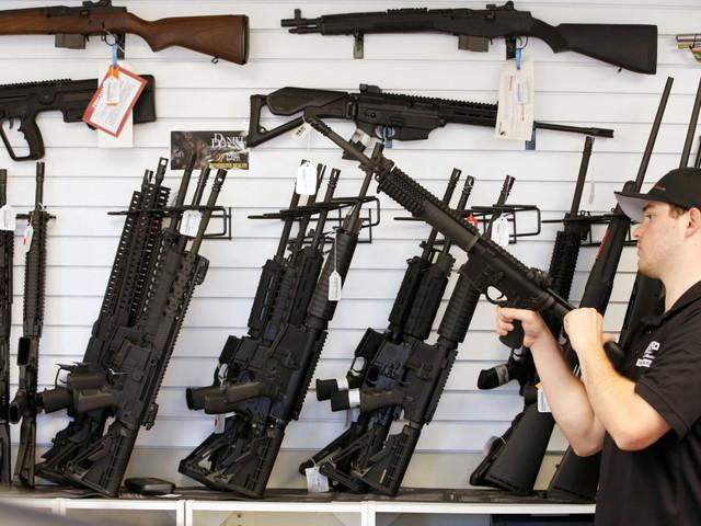 Germany's stringent gun ownership rules