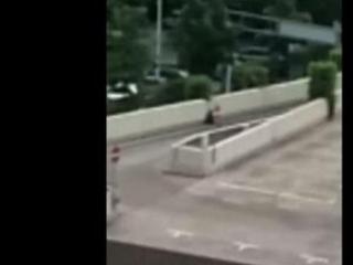 Cellphone Video Shows Munich Gunman on Roof