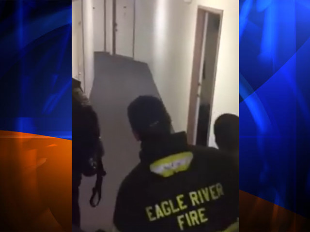 Video Shows Firefighters, Deputies Coaxing Small Bear Out of Colorado Apartment